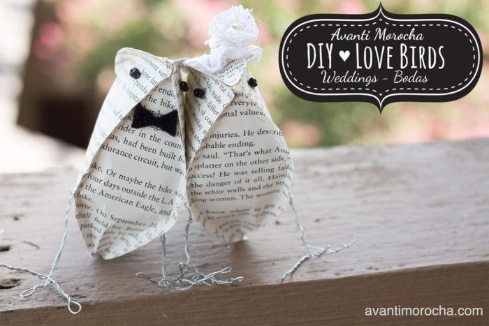 DIY Love Birds
