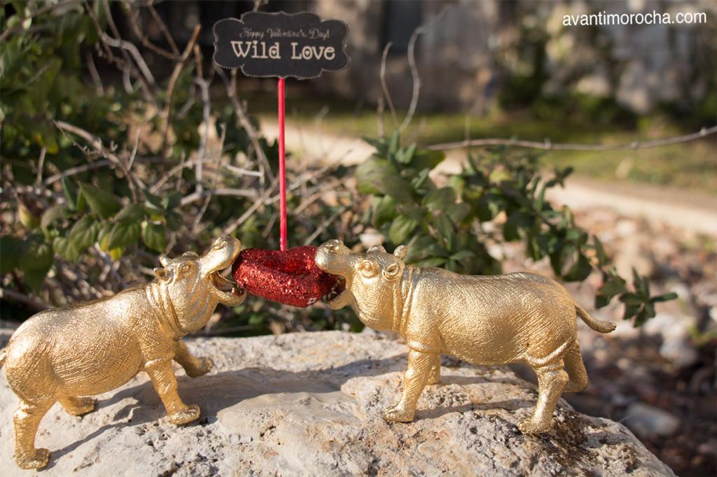 DIY WIld Love - Valentine's Day Decor