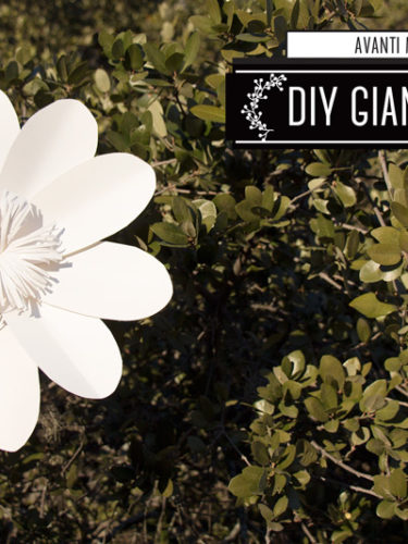 "DIY Giant Daisy ""How to Make  a Giant Flower Backdrop"""