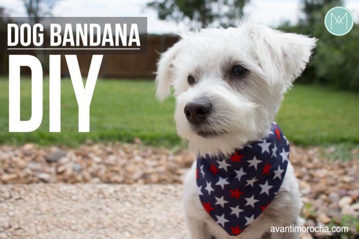 DIY Dog Bandanar