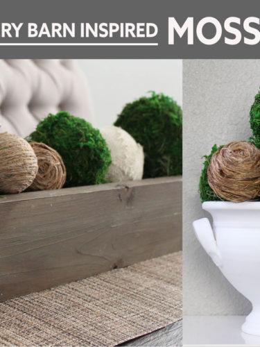 DIY Moss Balls | Bolas de Musgo